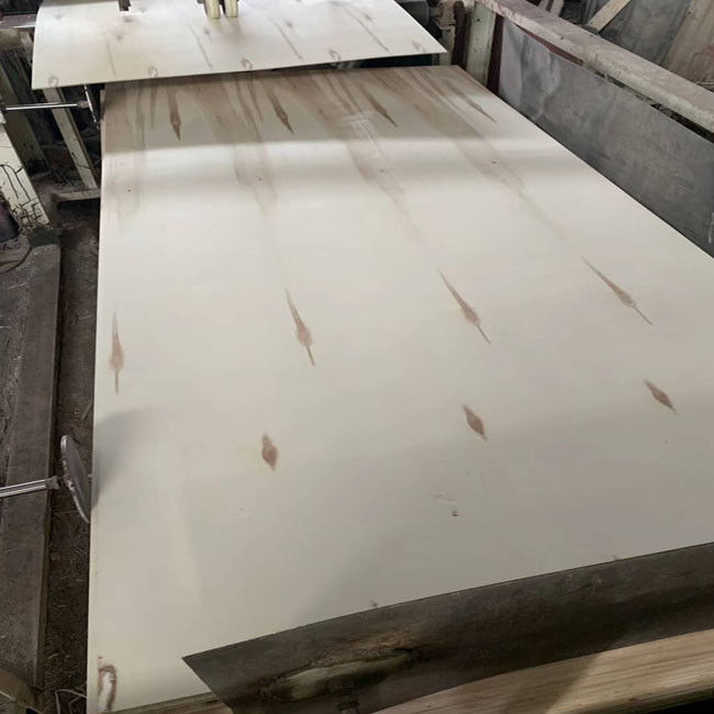 One Time Hot Press Commercial Mr Grade Plywood For Packing , Exterior Plywood