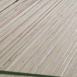 Poplar Wood Veneer Faced Commercial Grade Plywood One Time Hot Press Full Core Material